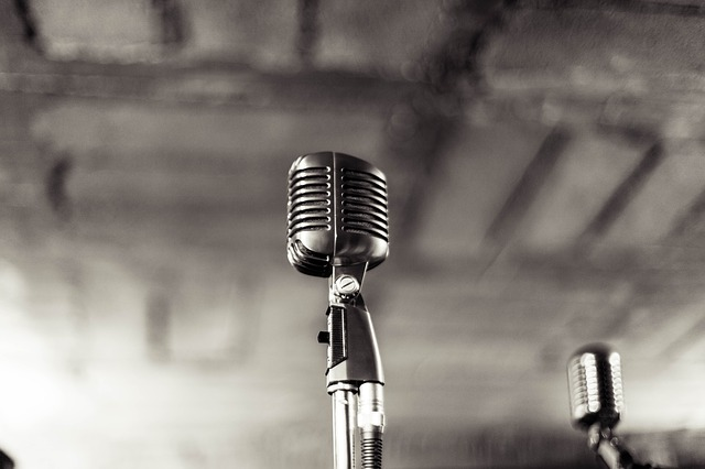 microphone-933057_640